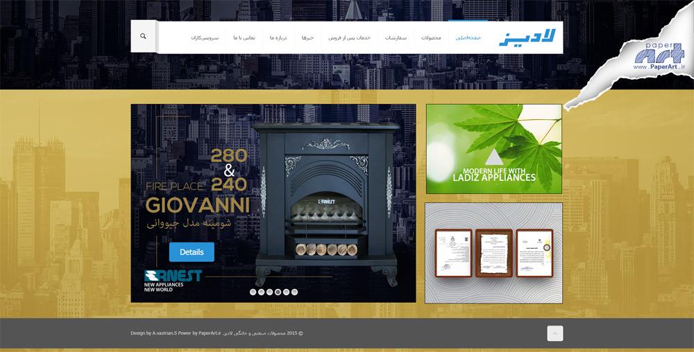 ladiz-website