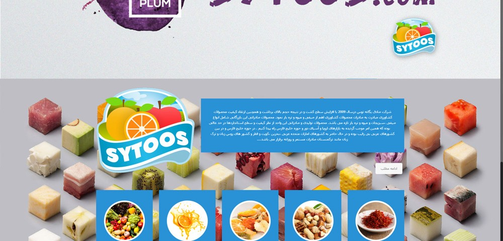 sytoos-website